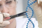 La técnica CRISPR/Cas9 puede causar un mayor daño genético de lo que se pensaba