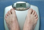 La proteína p38alfa, interruptor para controlar la obesidad y la diabetes