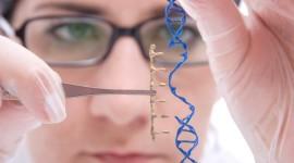 """Una """"vacuna"""" basada en plásmido evitaría el rechazo inmune en la terapia génica"""
