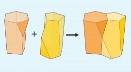 Escutoides: Una nueva forma geométrica que podría contribuir a la creación de órganos y tejidos en laboratorio
