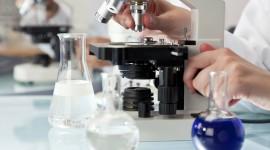 Científicos del MIT crean una terapia para regenerar los cartílagos con artrosis