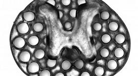 Un implante impreso en 3D promueve el crecimiento nervioso tras una lesión medular