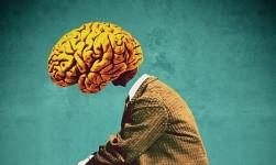 Crean nanopartículas capaces de transportar fármacos al tumor cerebral más letal