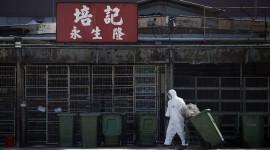 """Hallan en China un """"santo grial"""" de medicamentos capaz de detener epidemias de virus mortales"""
