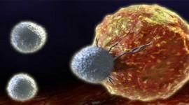 Un fármaco de 70 años ayuda a frenar la progresión del cáncer de mama