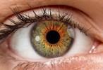 Un gel que se adhiere a la superficie del ojo podría reparar lesiones sin cirugía