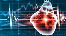 Una proteína podría modular la cardiotoxicidad inducida por quimioterapia