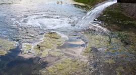 """Un """"problema mundial"""": los antibióticos en ríos superan 300% los niveles seguros"""