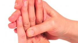 Estudian al fenofibrato como tratamiento de la artrosis