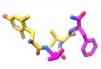 Un hongo podría imitar los efectos de los opioides con menos efectos secundarios