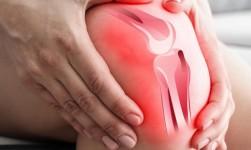 Un factor de crecimiento experimental es prometedor para tratar la artrosis de rodilla
