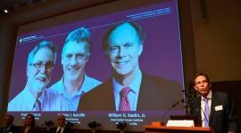 El premio Nobel de Medicina 2019 fue otorgado a William Kaelin, Gregg Semenza y Sir Peter Ratcliffe
