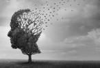 Avances en la prevención del Alzherimer: Nuevo tratamiento farmacológico