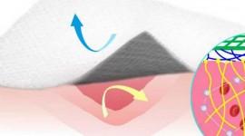 Desarrollan un vendaje que ayuda a detener el sangrado sin adherirse a la herida