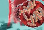 La compleja relación entre los fármacos y el microbioma