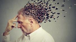 Proponen una primera guía basada en evidencias para la prevención de la enfermedad de Alzheimer
