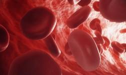 Las células cancerosas pueden utilizar capas de ácidos grasos para extenderse en el cuerpo